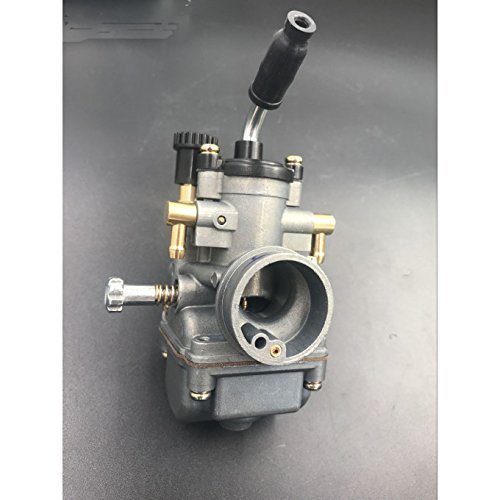 Gas Motorized Bike Carburetor